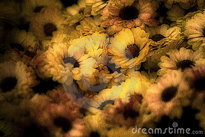 Aged Image of Flowers