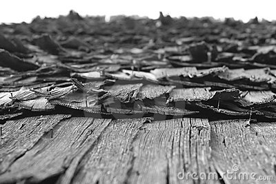 Aged shake roof from Romania (Maramures region)