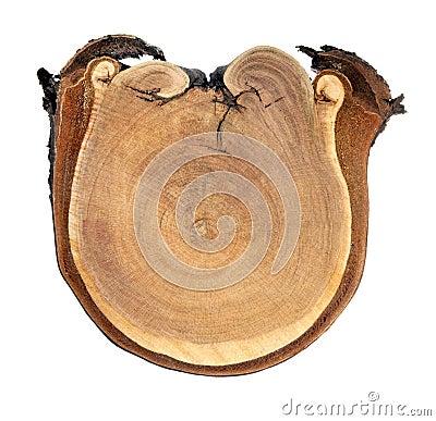 Aged wood cut.
