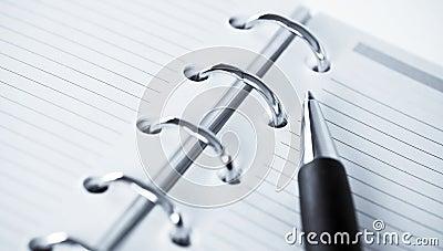 Agenda and ball pen