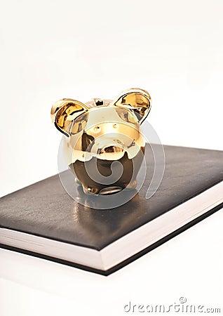Agenda and piggy bank