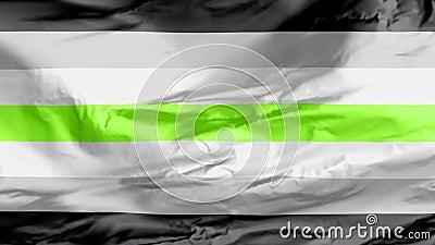 Agender Pride ondear bandera que representa a personas sin género Puede ser visto como una identidad de género no binaria Sin gén libre illustration