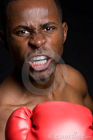 Aggressive Male Boxer