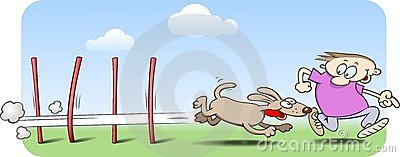 Agility dog zig-zaging through weave poles