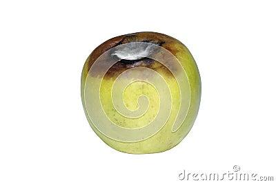 Aging green apple