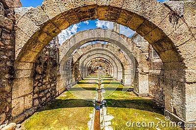 Agora Ancient City,Izmir