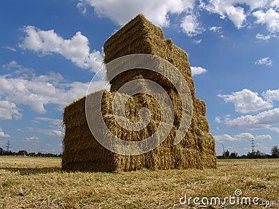 Agrar 160