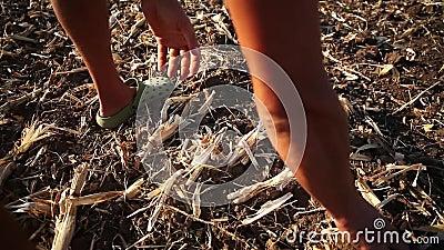 Agriculteur préparant le sol pour la saison prochaine Écologie de Permaculture cultivant le concept clips vidéos