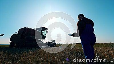 Agricultura masculina controla campo com culturas vídeos de arquivo