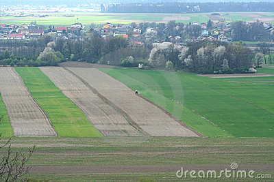 Agricultural field from the air