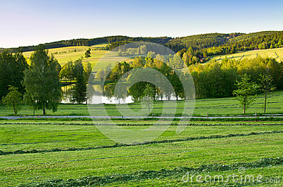 Agricultural scenery with pond