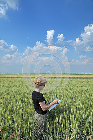 Agriculture, agronomist in field