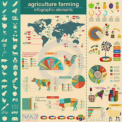 Free Agriculture, Animal Husbandry Infographics, Vector Illustrationstry Info Graphics Stock Image - 44732611