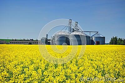 Agriculture farm silo