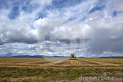 Agriculture Field And Equipment Under Storm Skies