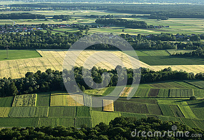 Agriculture fields from air