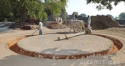 Agriculture in India Editorial Image