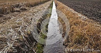 Agriculture progress