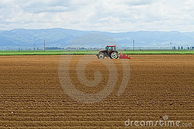 Agriculture - tractor sowing potatoes