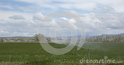 Agriculture watering