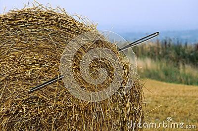 Aguja en un haystack