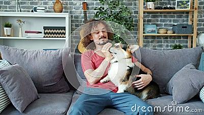 Aimant propriétaire d'un animal en train de jouer avec un beau chien de corail, animal léchant les mains de l'homme clips vidéos