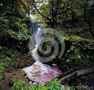 Free Aira Force Royalty Free Stock Photography - 46773997