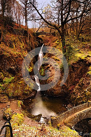 Free Aira Force Stock Images - 59842324
