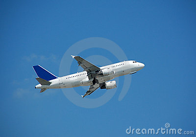 Airbus A-319 in flight