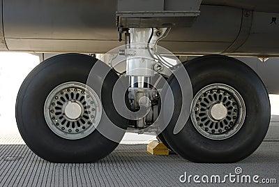 wheels up airline business plan development download