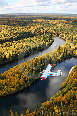 Free Airplane Over Forest Royalty Free Stock Photo - 10986895