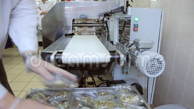 In airport factory the male worker is sorting the food container. With salads going on conveyer packing it with plastic bag made of cucumbers, eggs, smoke meat stock video footage