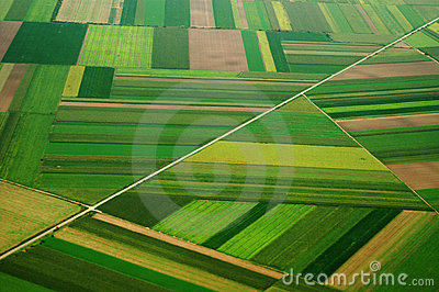Airview of field in Serbia