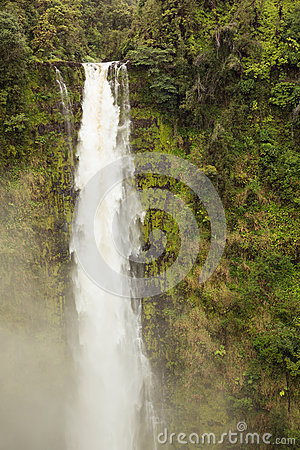Free Akaka Falls Frozen Royalty Free Stock Photos - 73120258