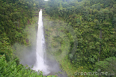 Akaka Falls on Hawaii s Big Island