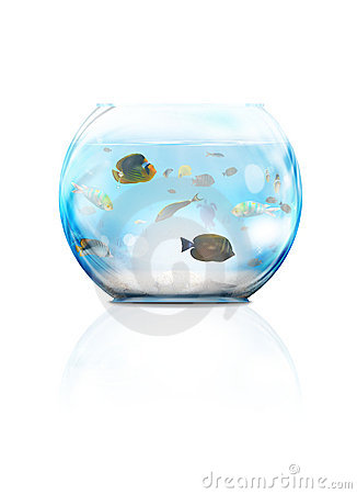 Akvariumexponeringsglas