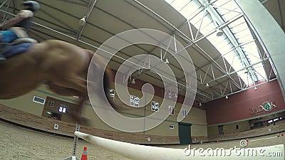 AKYAKA - TURQUIA, EM MAIO DE 2015: Curso avançado da equitação, instrução de salto da prática filme