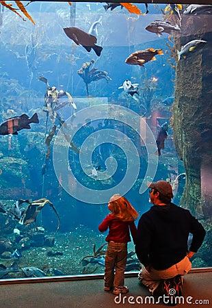Free Alaska - Family Visiting Sea Life Center Royalty Free Stock Image - 28627746
