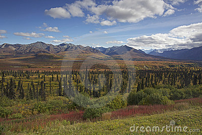Alaska Glennhighway in autumn
