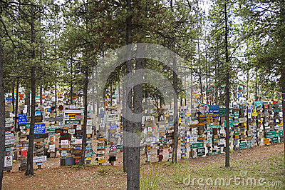 Alaska Highway Sign Forest