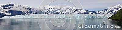 Alaska Hubbard Glacier Panoramic Vista