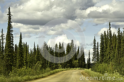 Alaska, road from Fairbanks to Arctic Circle