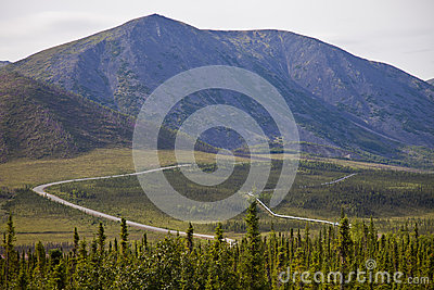 Alaskan pipelineand haul road