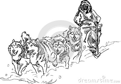 Alaskan Sled Dogs Stock Photo Image 37270370
