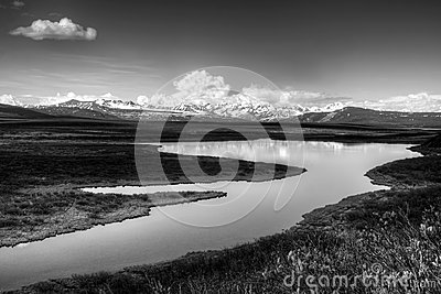 Alaskan wilderness in black and white