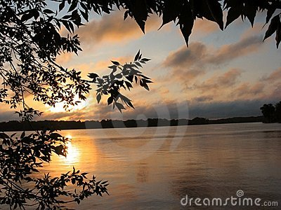 Alba nel lago reed - 1