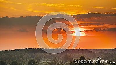Alba sopra Forest Landscape Vista scenica del cielo di mattina con il sol levante sopra Forest Early Summer Nature Of Europa stock footage