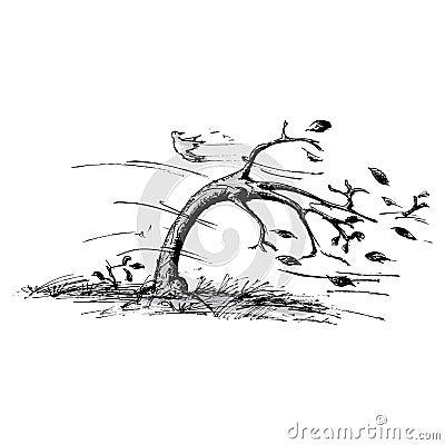 Albero nel vento
