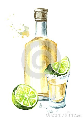 Free Alcohol Drink Tequila, Yellow Bottle Of Mexican Cactus Booze, Full Shot Glass With Slice Of Lime And Salt. Hand Drawn Watercolor V Royalty Free Stock Images - 120683459