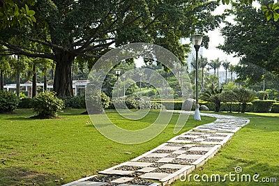 Aleja ogród